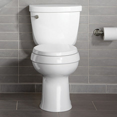 dealing with toilet overflow