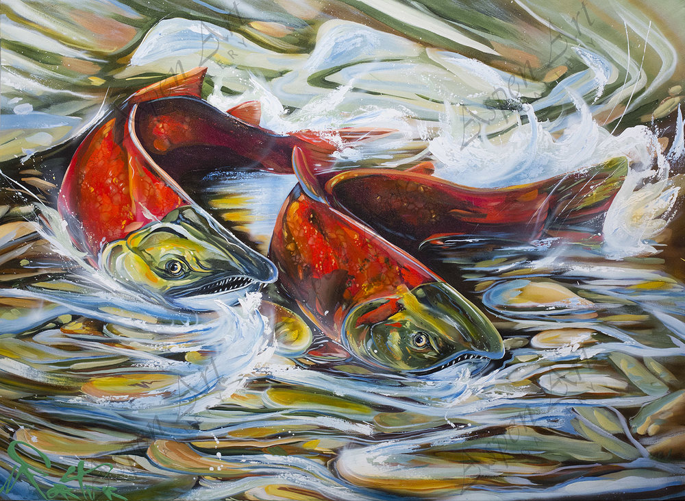 Salmon 36x48