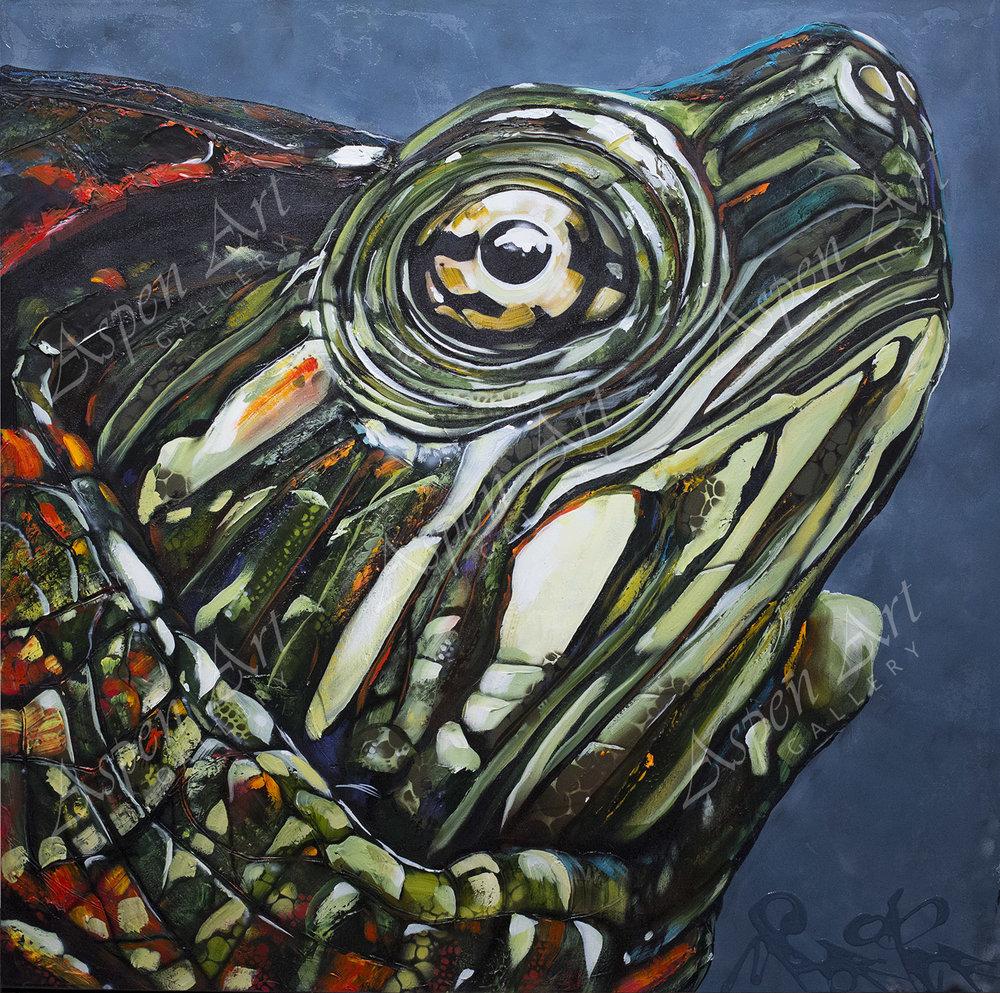 Turtle 40x40