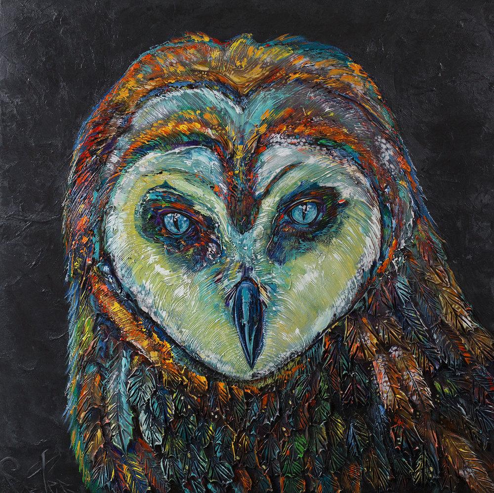 Barn Owl 48x48