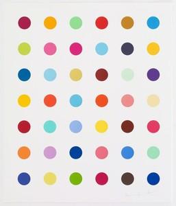 Damien Hirst piece.jpg