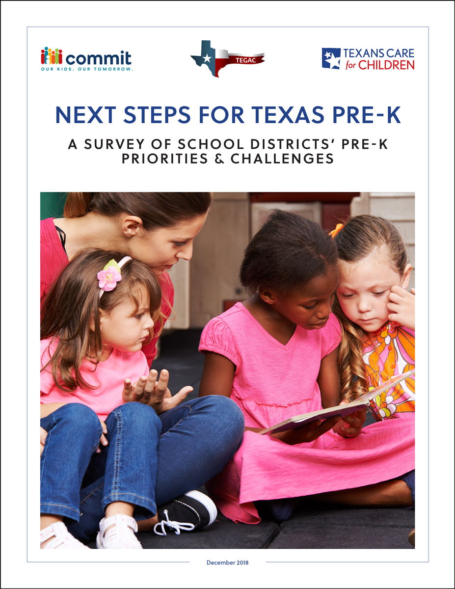 prek-survey-report-cover.png
