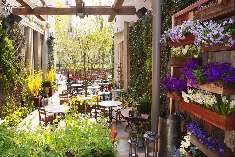 talulas garden - Talulas Garden