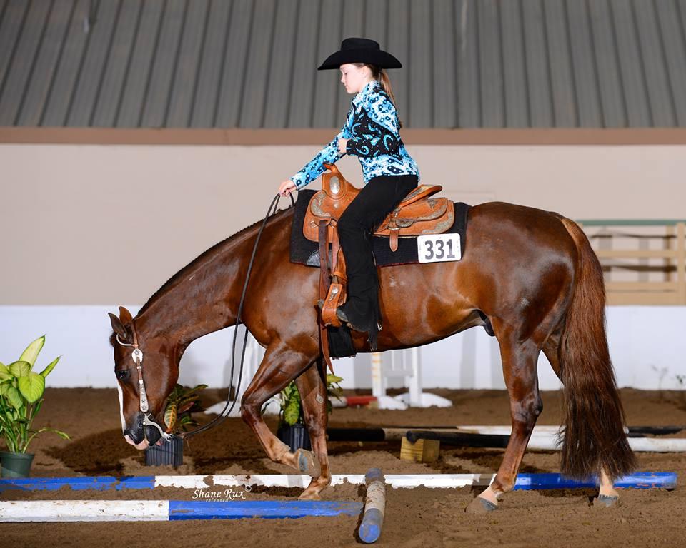 Florida Gold Coast Quarter Horse Show  .jpg