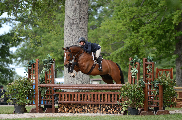 Upperville_Horse_show.png