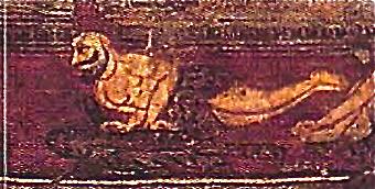 chakrāsana mysore copy.png