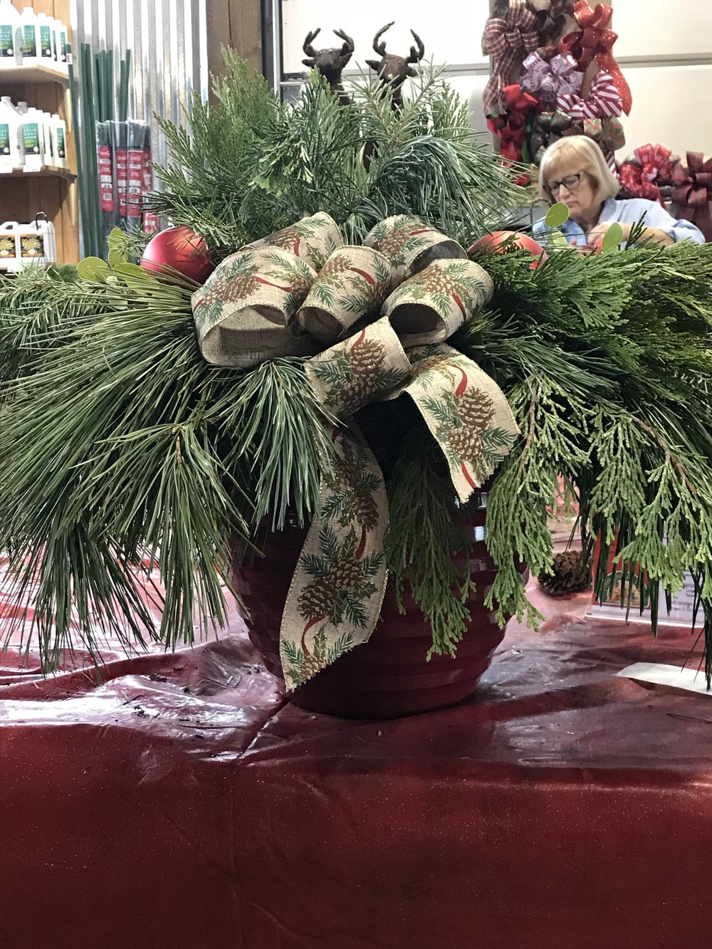 "Holiday Hanging Basket - Come create with us. You will receive all instruction and materials needed to create a beautiful and long lasting 12"" Holiday Hanging Basket.If you would like to use your own basket from last year, please see the option below when ordering.Celebrate the season with our famous Toddies, served up piping hot at all our classes.This class is presented in an area that can be chilly, please dress accordingly."