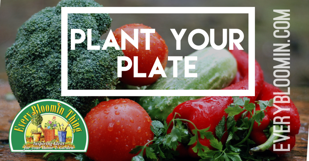 Plant Your Plate Part 1 - Join Melissa at this inspiring seminar on how to grow your own food. She will cover everything from seed starting to harvest. You will leave with the knowledge to have your most productive garden ever!