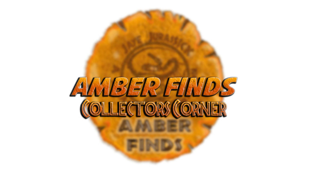 Collectors-Corner.jpg