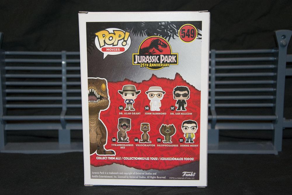 Raptor 3.jpg