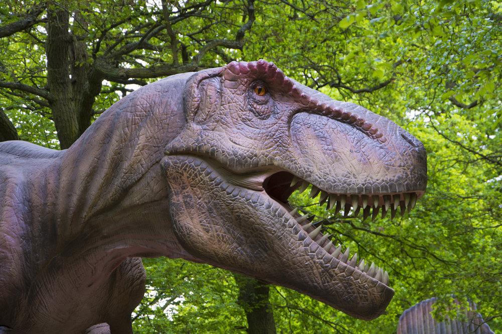 T-Rex 1.jpg
