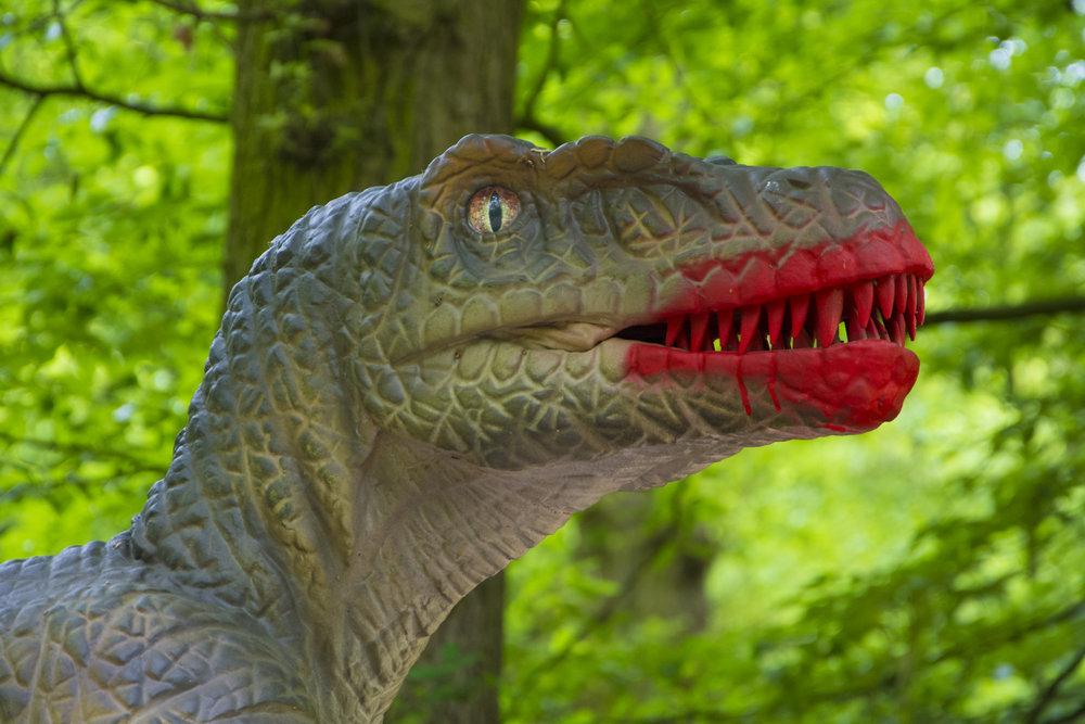 Bloody Raptor.jpg