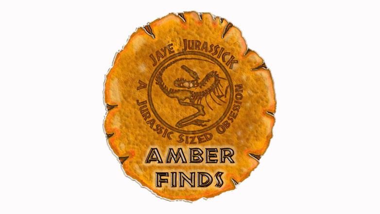 Amber-Finds.jpg