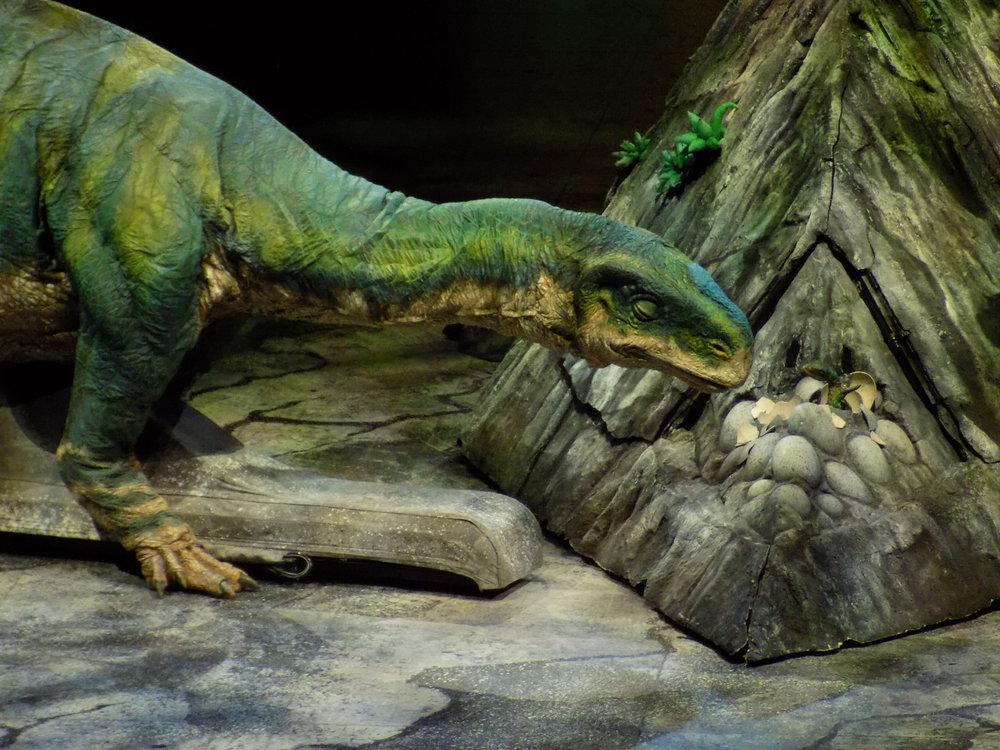 Plateosaurus 3.jpg