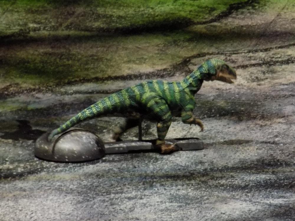 Plateosaurus Baby.jpg