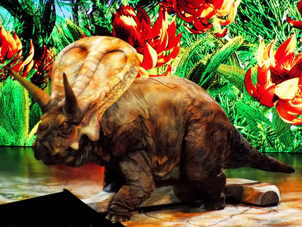 Torrosaurus 2.jpg