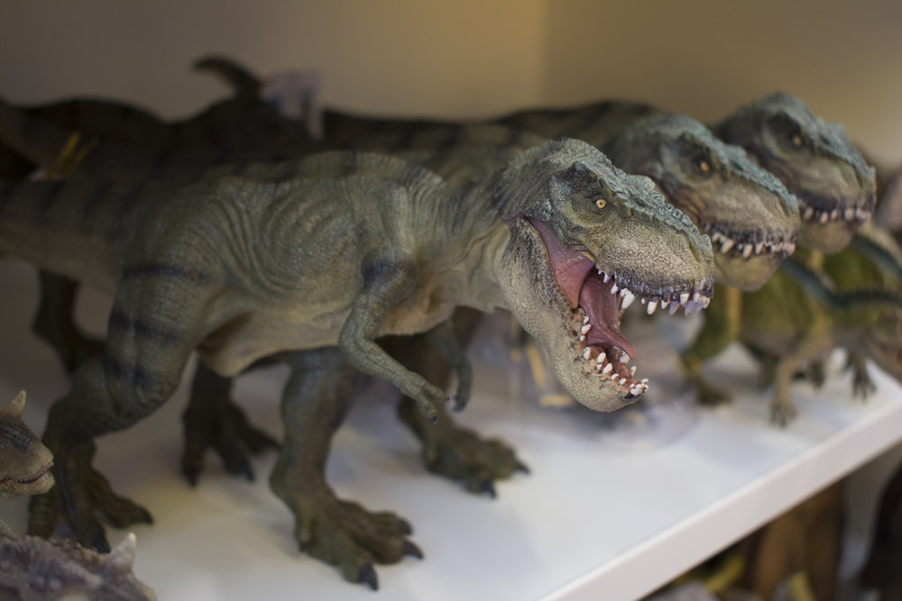 Papo T-Rex.jpg