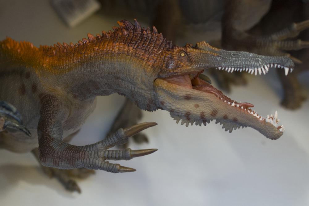 Lavasaurus.jpg
