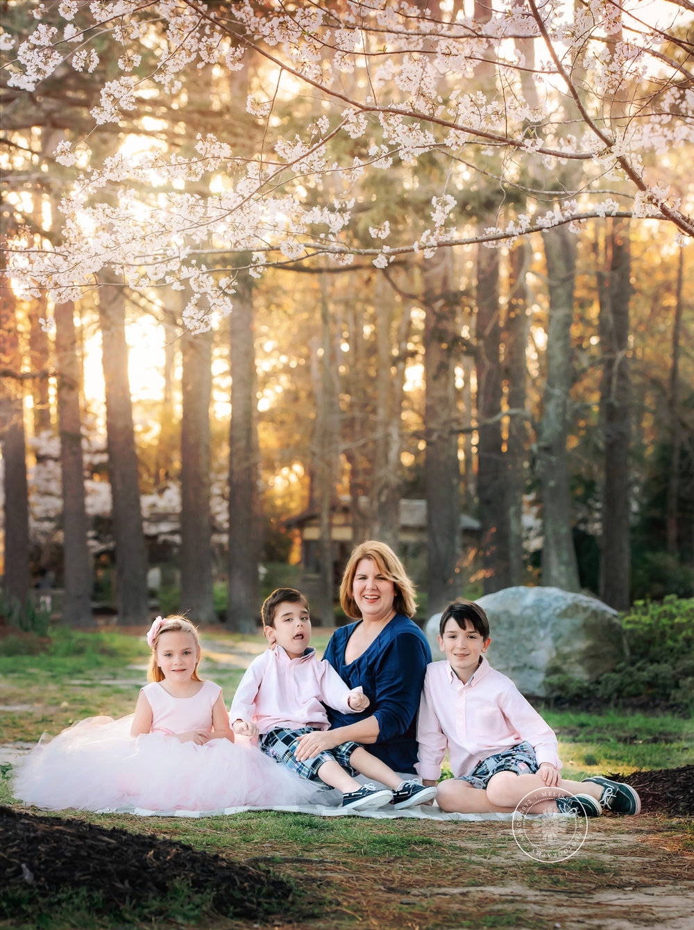 cherry-blossom-family-at-red-wing-park-virginia-beach-photographers-melissa-bliss-photography