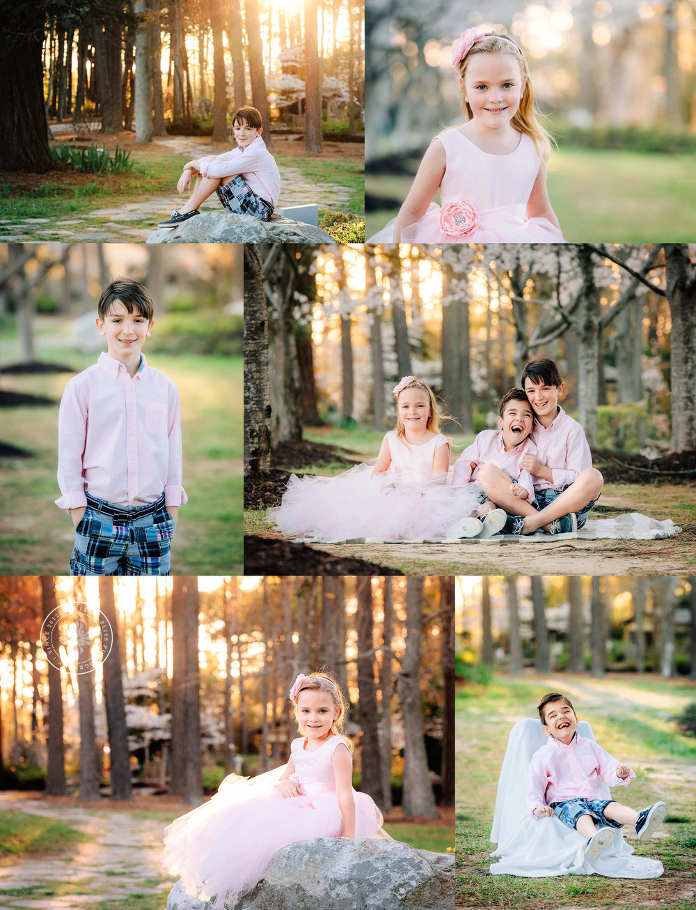 red-wing-park-cherry-trees-at-sunset-cherry-blossom-sessions-norfolk-photographer-melissa-bliss-photography