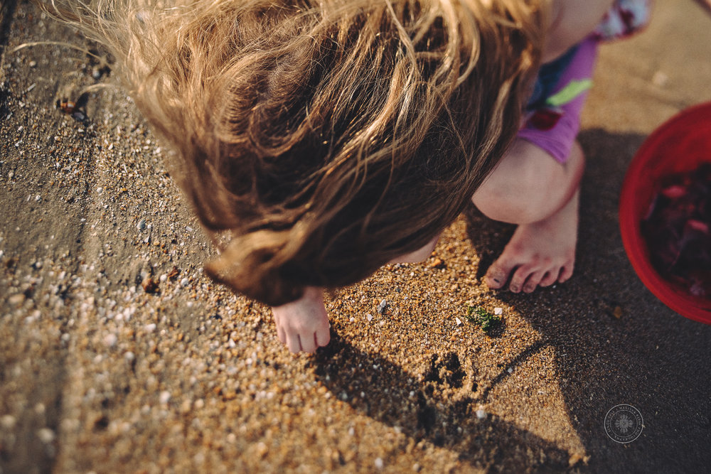 melissa-bliss-photography-top-beach-photographer-virginia-beach-sandbridge-young-girl-picks-up-shells