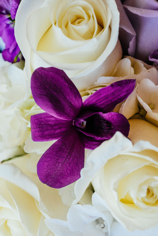 VA-Beach-Norfolk-Wedding-Photographer-wedding-tips-and-trends-2018