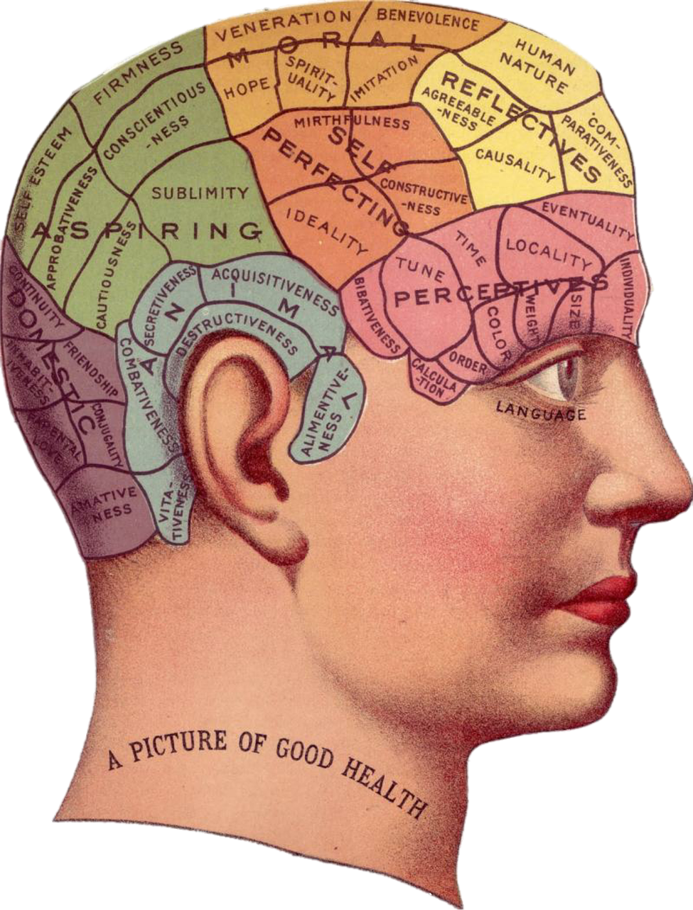 authentic-body-therapy-tips-to-keep-your-memory-sharp