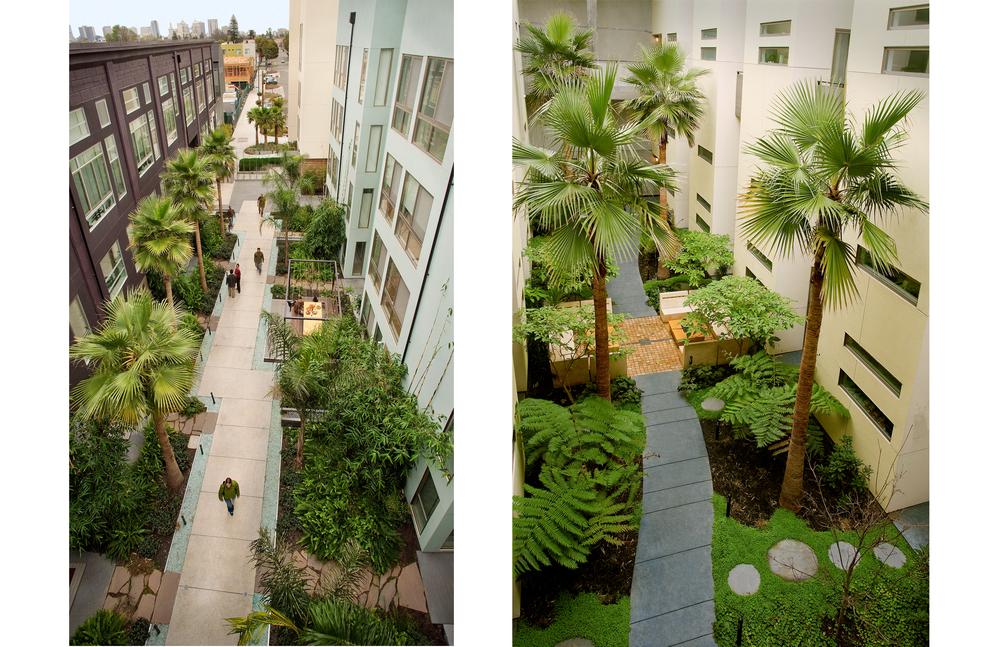 pcl dip courtyard liv rm.jpg