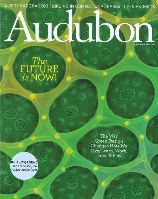 cover.audubon.jpg
