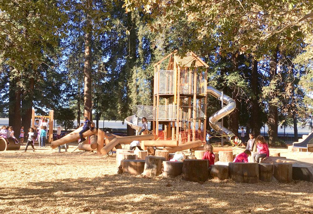 Redwood Day School