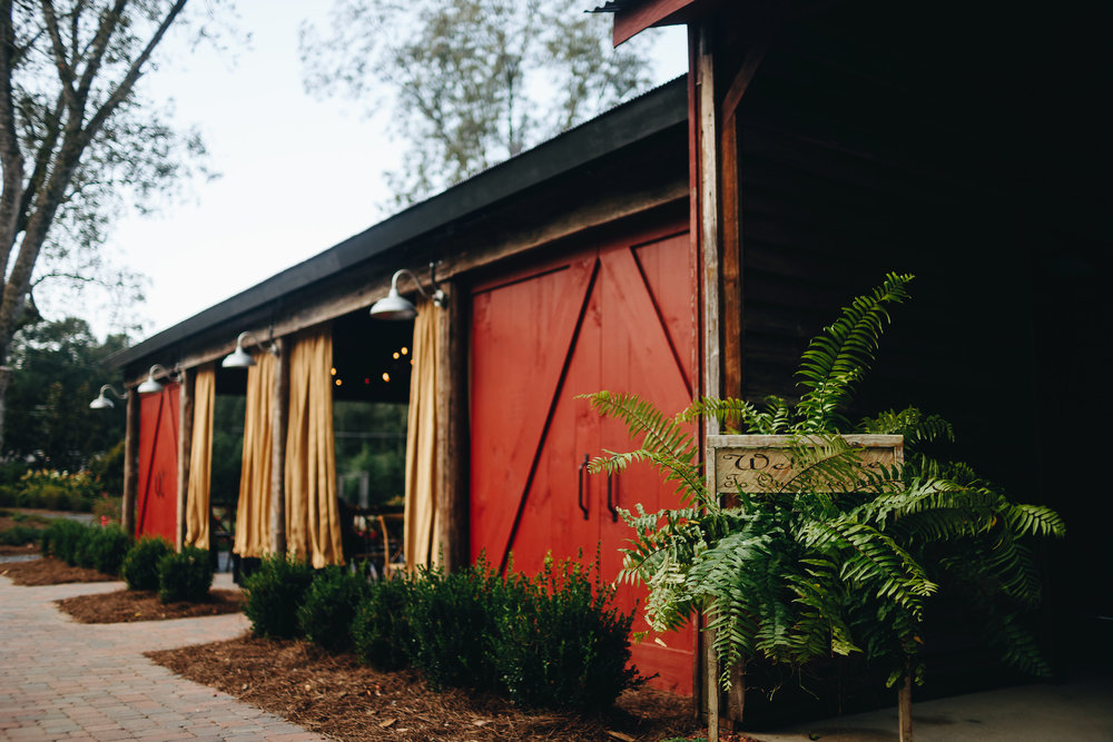 Magnolia.House.Garden.9.30-30.jpg