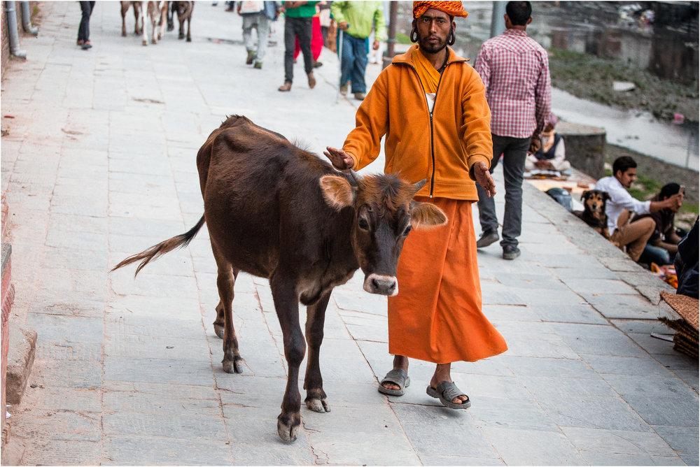 Nepal Blogg 8-04.jpg
