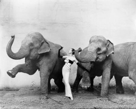 Model wears dress designed by Yves Saint Laurent with the elephants of  Cirque d'Hiver, August 1955
