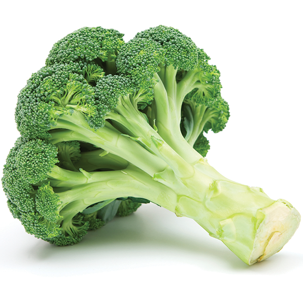 broccoli_commodity-page.png