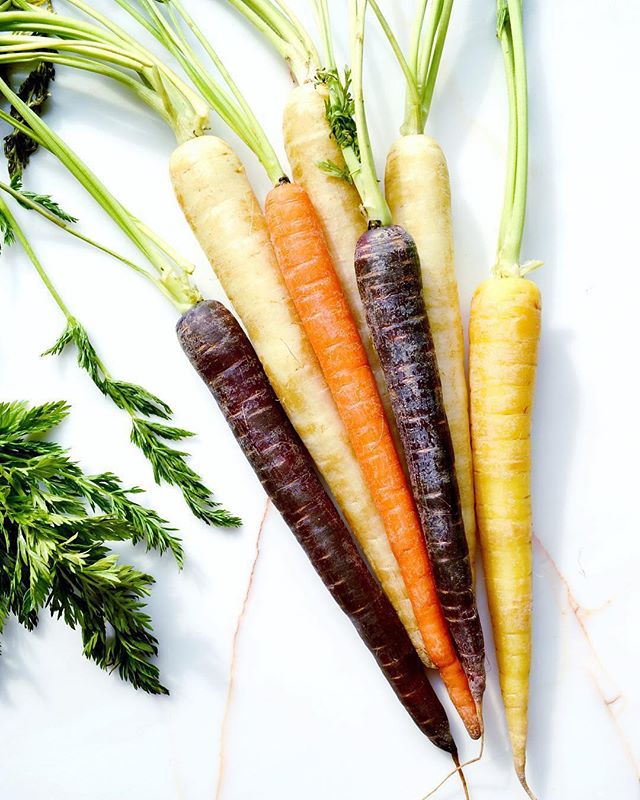 Did you know carrots come in more hues than just the classic orange? Carrots like the organic rainbow variety captured here by @sara_true, come in colors like dark purple, pale yellow and white! While each carrot is similar in texture and shape, the different colors provide individual flavor profiles and health benefits. (The yellow carrot, for example, has Xanthophylls thanks to its hue, which support healthy blood flow!) Try them all out and let us know if you have a favorite color! 🥕 . . . . #gonative #nativesunjax #organic #organicveggies #carrots #rainbowcarrots #purplecarrot #yellowcarrots #purplecarrots #vegetables #alwaysorganic #health #healthbenefits