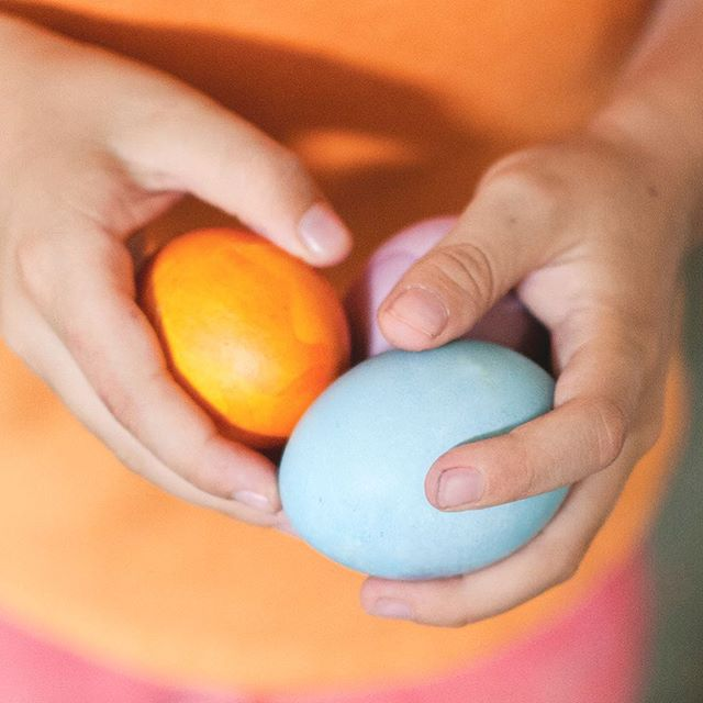 We're egg-stra excited for our Natural Egg Dyeing Event this Friday! Bring the kids to any @NativeSunJax location this Friday, April 19 between 1 and 3 PM to color and decorate organic, free-range eggs! (Two per kiddo.) RSVP and more info at bit.ly/KidsEggDyeing2019. 🐰🥚🎨 📸:@ColorKitchenFoods . . . . #gonative #nativesunjax #easter #naturaleggdye #organic #easterdecor #eggdyeing #colorkitchen