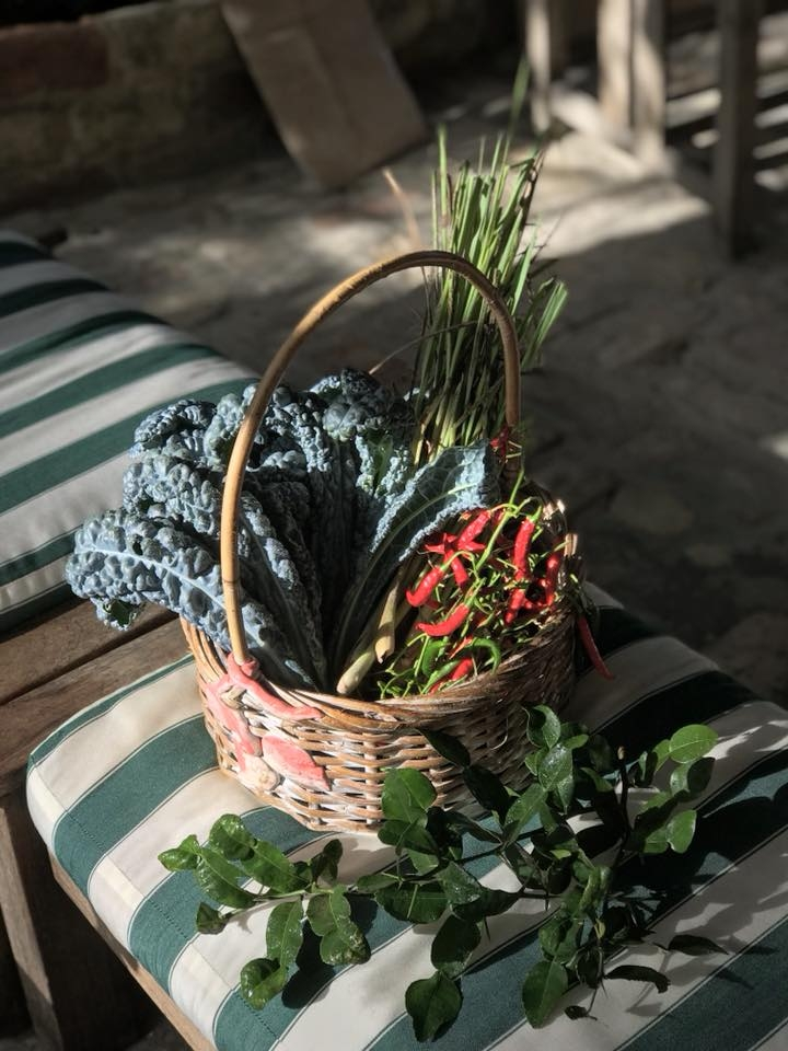 basket of herbs.jpg