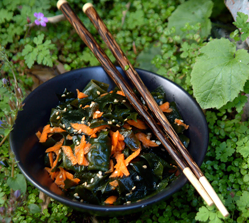 wakame salad-chef-lisa.jpg