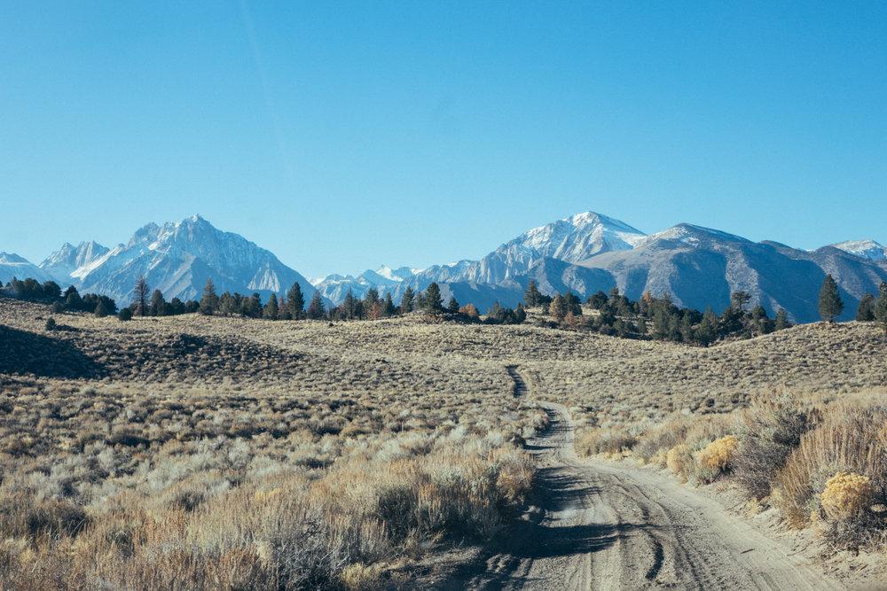 mammoth_trail1.jpg