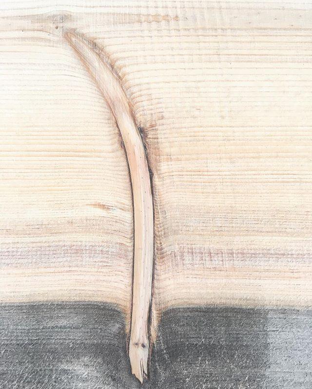 Hidden Limb inside an amazing sugar pine slab. #color #bluestain #luckyfeather @murphyswoodworks