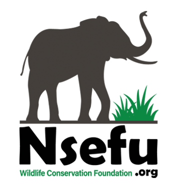 Nsefu Wildlife Conservation Foundation