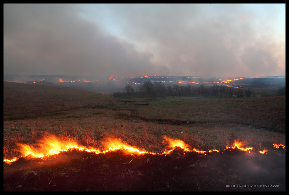 01-251 Spring Fires Burning