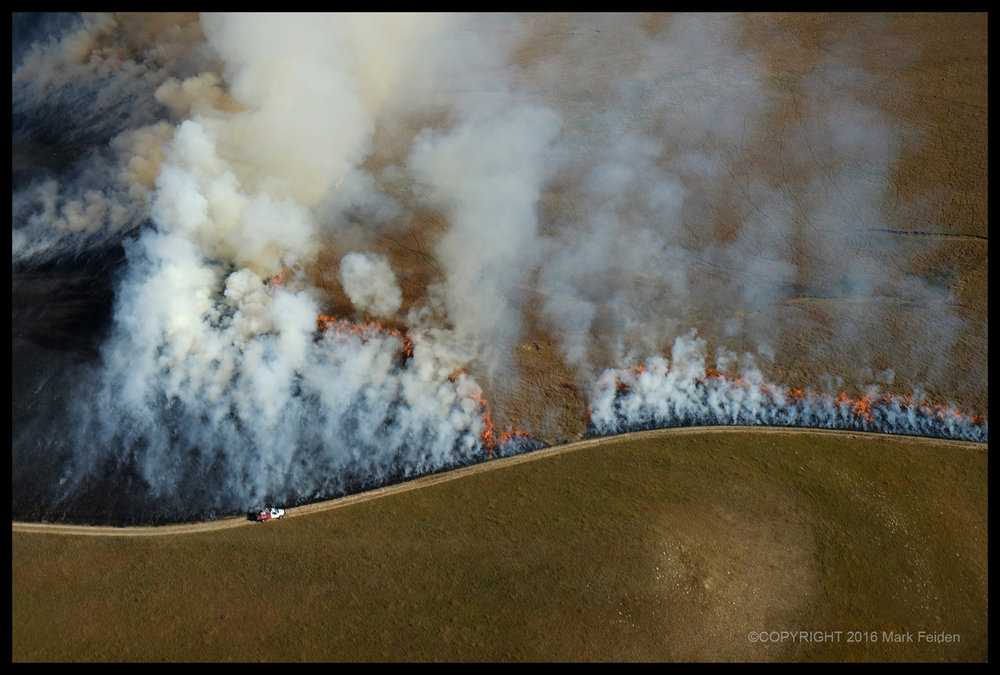 01-280 Fall Burn at the Tallgrass Prairie Preserve