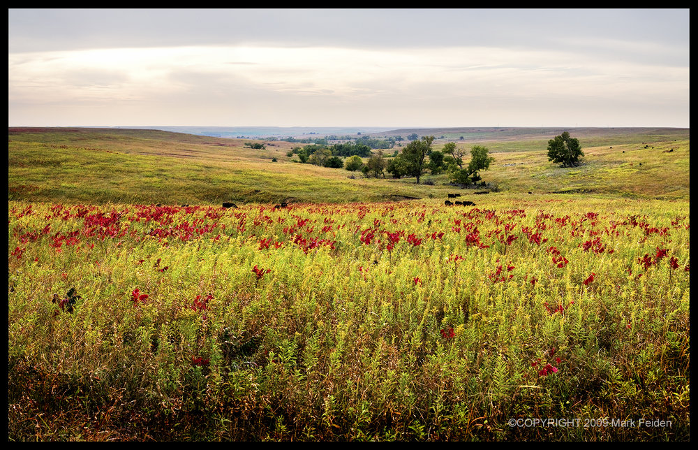 01-142 Early Fall in the Flint Hills