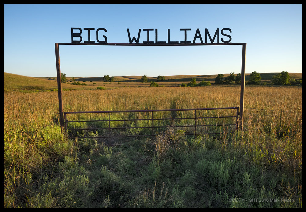 01-235 Big WIlliams