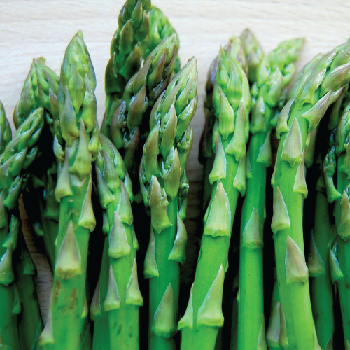 asparagus_bake_lead.png