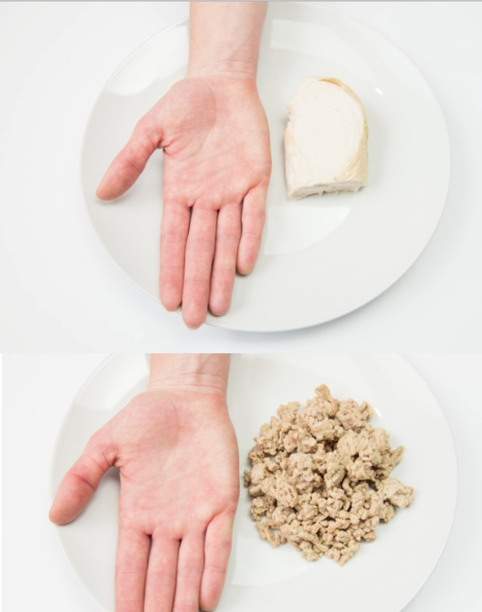 hand portions protein