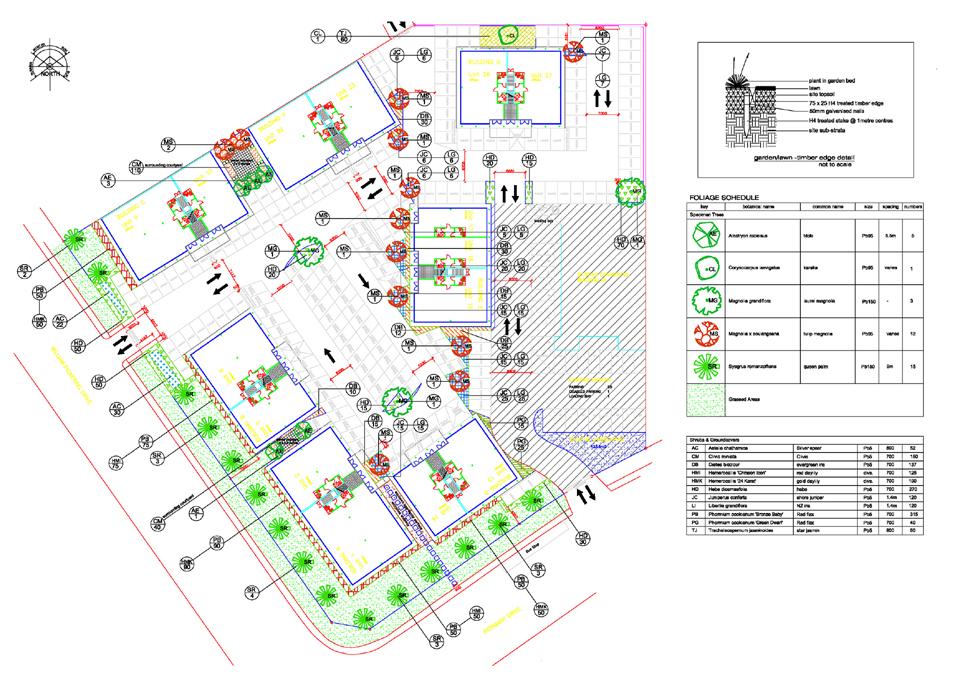 Plan-AlbanyOfc.jpg