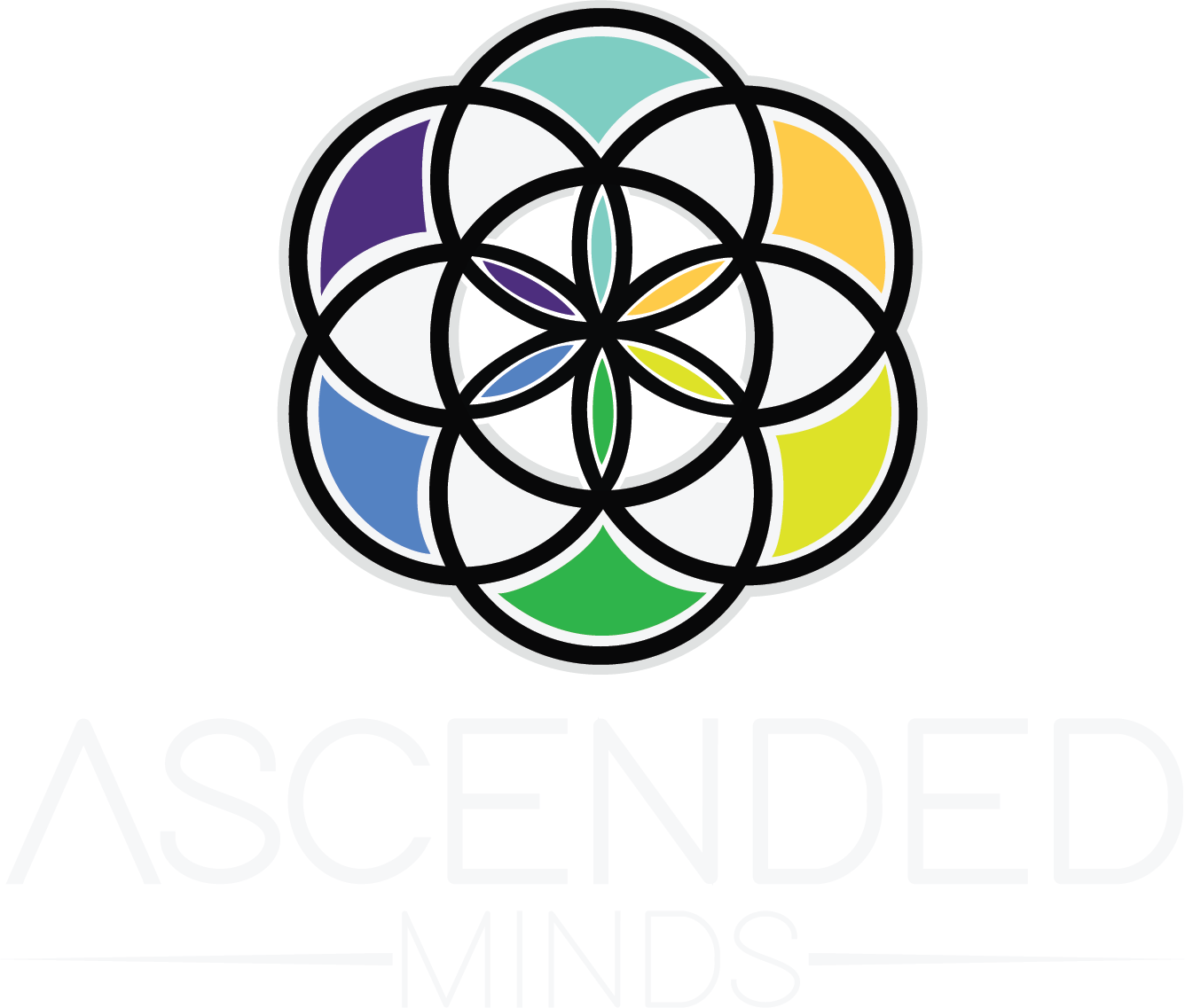 Ascended Minds