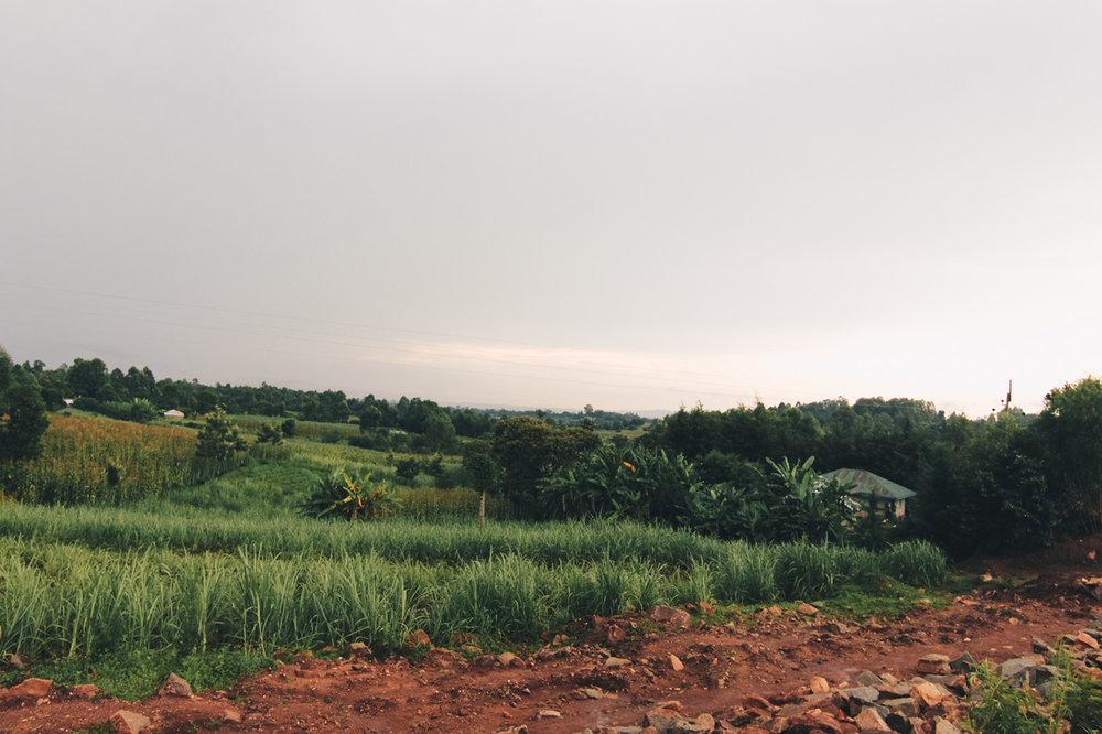 kenya-journals-landscape-crossbar.jpg